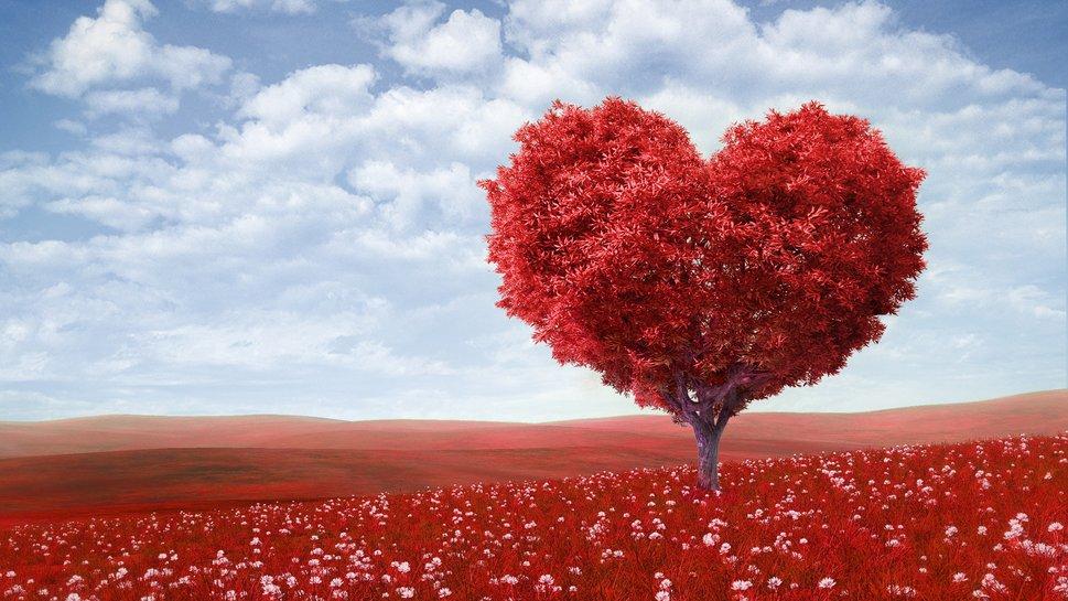 98983__valentine-amp-39-s-day-love-romance-heart-tree-field-flowers-sky_p